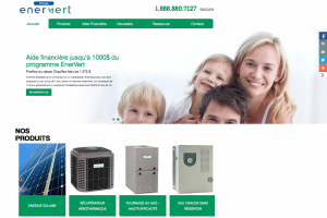 enervert P1 - Portfolio